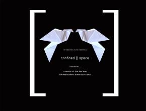 2 turtle doves #confinedspaceinstagiveaway